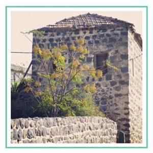 בית ישן בכפר כמא